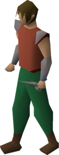 Steel defender equipped