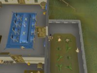 Cryptic clue - dig chicken pen in champion's guild