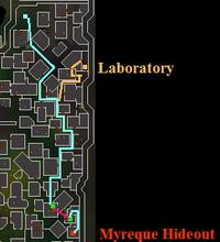 Doh-mine+lab