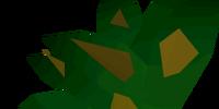Grimy dwarf weed
