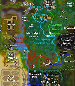Fairy Ring Code Mort Myre Swamp