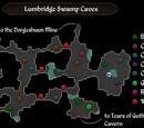Lumbridge Swamp Caves