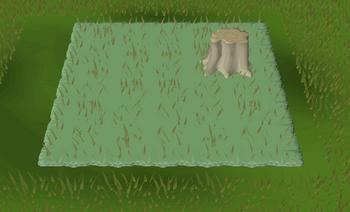 Grassland habitat built