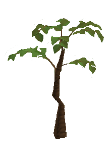 File:Jungle tree.png