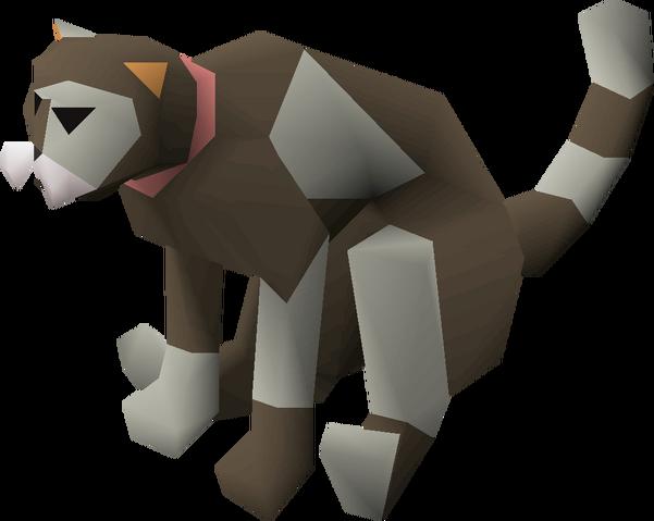 File:Dromund's cat.png