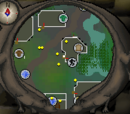 Canifis Agility Course