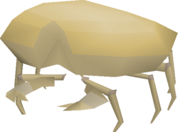 King Sand Crab