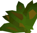 Grimy ranarr weed