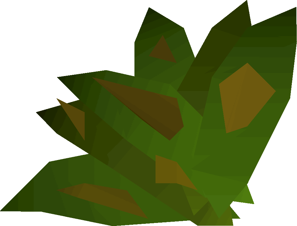 File:Grimy ranarr weed detail.png