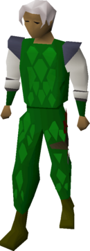 Green d'hide armour equipped