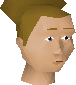 File:Grand Exchange clerk chathead.png