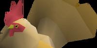 Evil Chicken