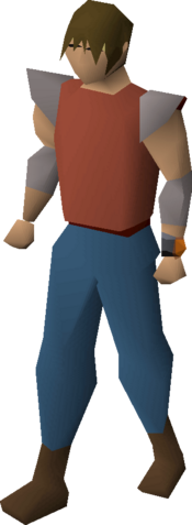 File:Zenyte bracelet equipped.png