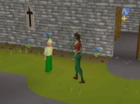 OSRS 3rd birthday