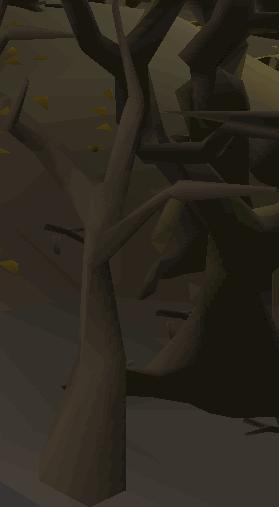 Undead tree