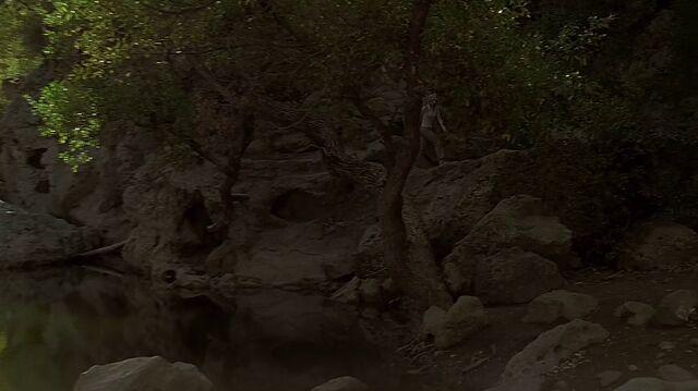 File:2x11 rock pool.jpg