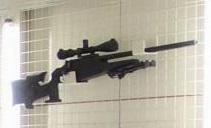 File:Armory Blaser R93.jpg