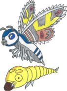 Mothra the 12th Imago and Larva