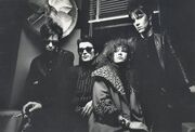 The Cramps TheCramps