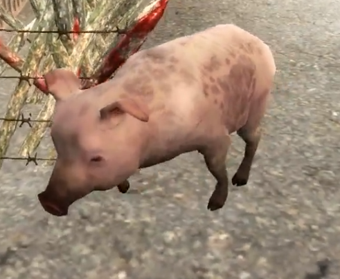 File:AnimalPig.png