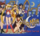 Sailor Moon Abridged (Megami33 Version)