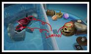 5-6 Orca Pool Photo