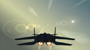 Eagle Plus external