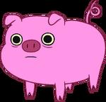 Pig trans