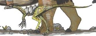 File:Compsognathus.jpg