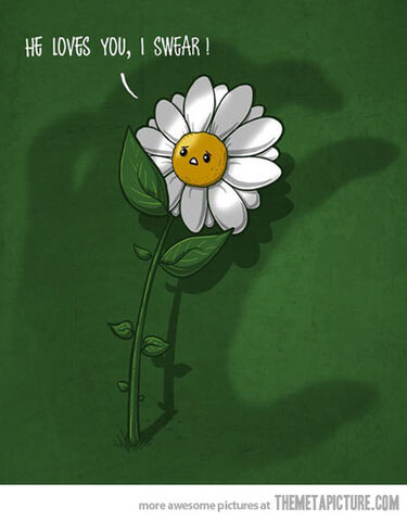 File:Funny-scared-flower-daisy.jpg