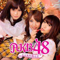 AKB48 - Koko ni Ita Koto theater