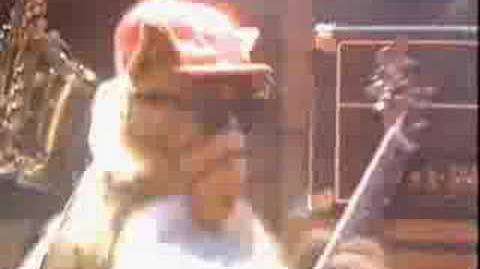 Alf Rock Video