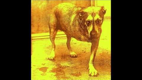 Alice In Chains - 'Alice In Chains' (Full Album)