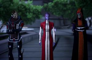Citadel Council
