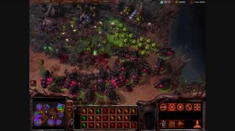 Starcraft II - The Infestor (Zerg)