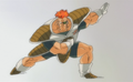 Recoome Pose 1