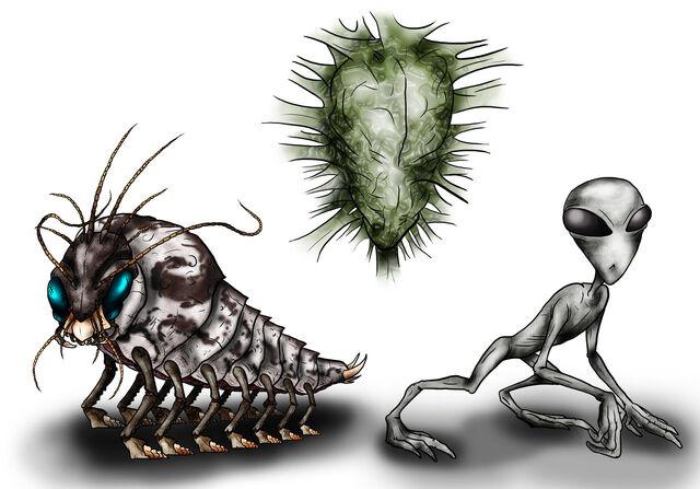File:Animorphs Races Skrit Na by Monster Man 08.jpg