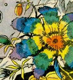 File:Rainbow-flowers.jpg