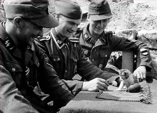 Nazis with kittens 5152