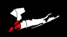NYC DownDifPath
