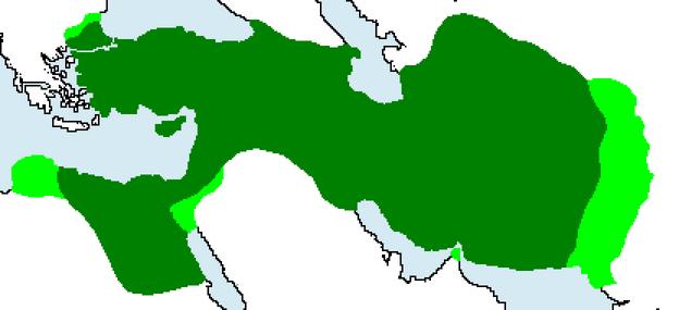 Persia2(gekím)