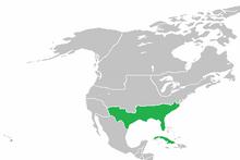 QI 1920 Confederacy