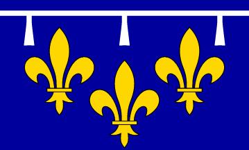 File:Orleansflag.png