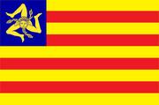 EVIS flag