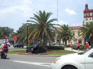 Cannon and palms on Anderson Cir., St. Augustine