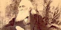 John Robertson (Australian Republic)