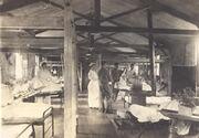 UoR Hospital W Lovegrove