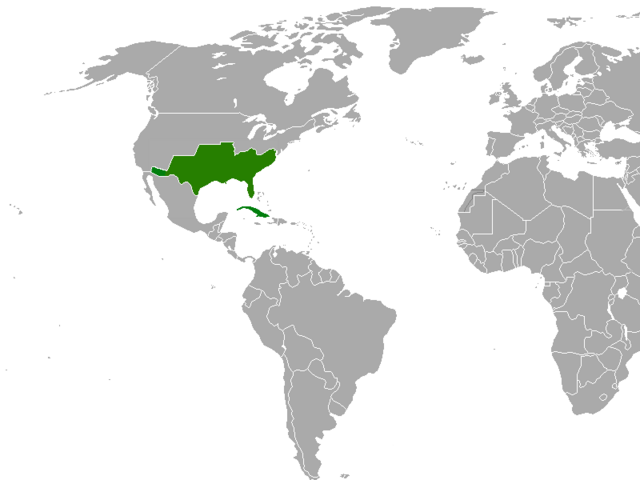 File:CSA map.png