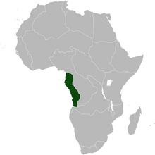 NewGermany Africa NW