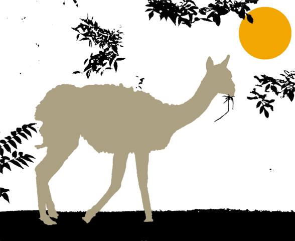 File:Vicuna of the East.png